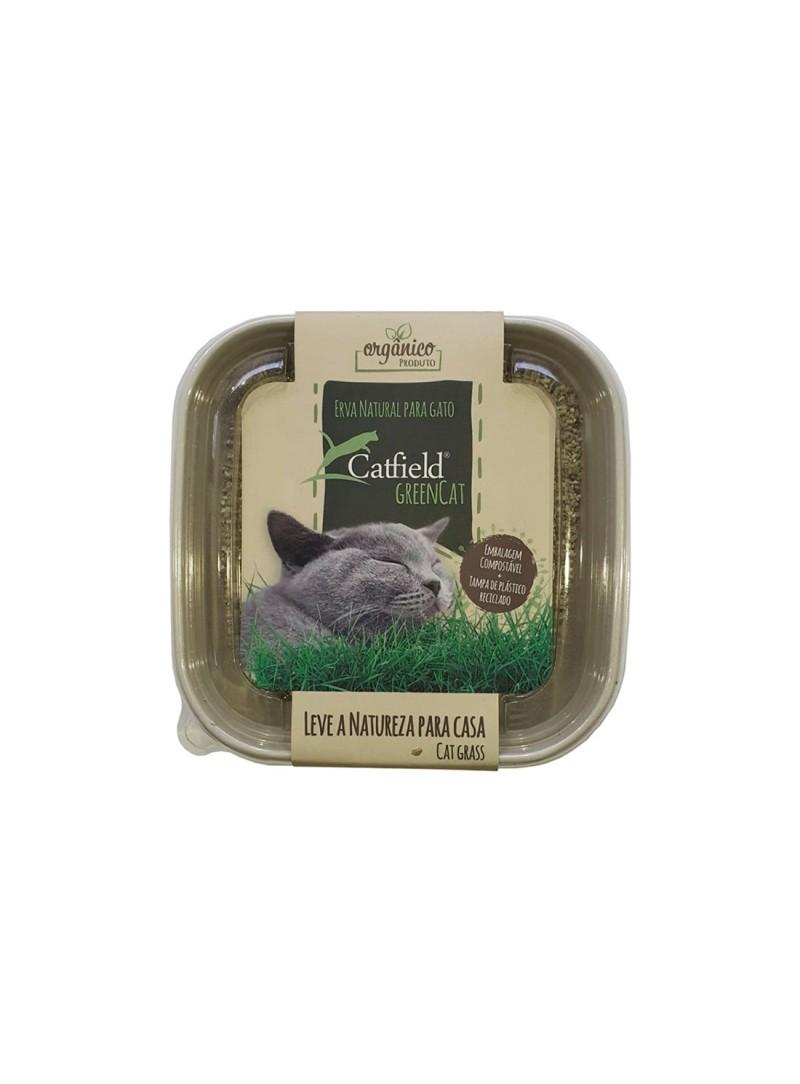 CATFIELD GREEN CAT - CATFLD007-1