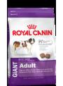 RCGADL18.JPG - Royal Canin Giant Adult Promoção