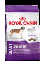 RCGJNR18.JPG - Royal Canin Giant Junior Promoção