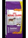 Royal Canin Giant Junior Promoção-RCGJNR18 (2)
