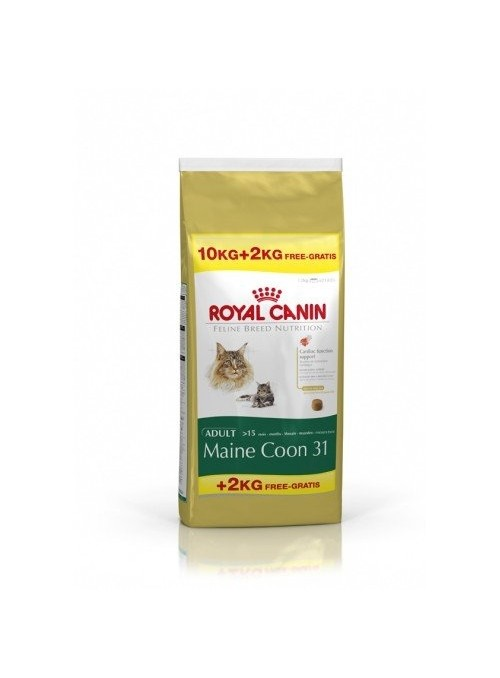 Royal Canin Maine Coon Adult Promoção-RCMAINECO12