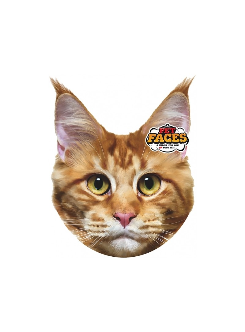 Pet Faces Pillows - Maine Coon Cat