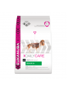 Eukanuba Adulto Senior 9+