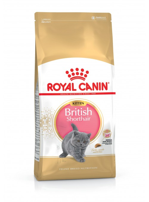 Royal Canin Kitten British Shorthair-RCKITBRISH02 (2)