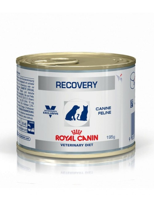 Royal Canin Recovery Cat/Dog-RCRECO195