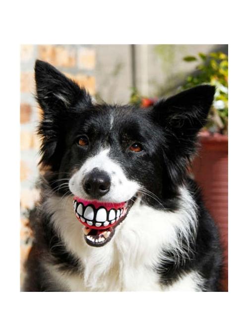 Rogz Grinz Ball-BPGR01 (6)