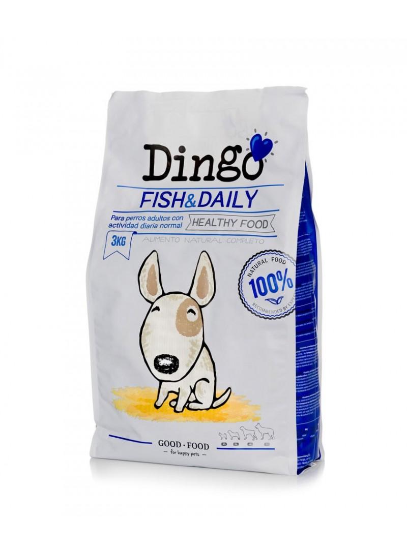 Dingo Fish & Daily-DI185