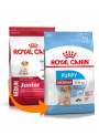 Royal Canin Medium Puppy-RCMEDIUMJU04 (2)