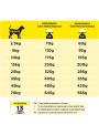 Pro Plan Vet Dog NC - NeuroCare-P12338868 (3)