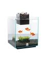 Aquário Fluval Chi-10506 (2)