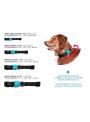 Zee.Dog Coleira Mahalo-ZDCOLLAR61 (4)