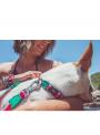 Zee.Dog Coleira Lola-ZDCOLLAR17 (3)