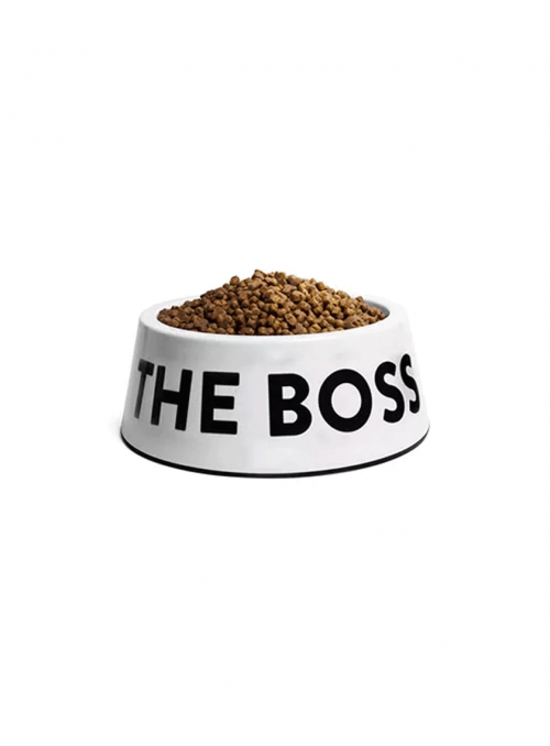 Zee.Dog | Comedouro White Boss