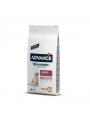 AD924106.JPG - Advance Maxi Senior 6+