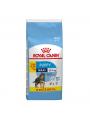 RCMXJNR18.JPG - Royal Canin Maxi Puppy Promoção
