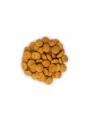 CPW2130.JPG - Hill's Science Plan Dog Medium Perfect Weight