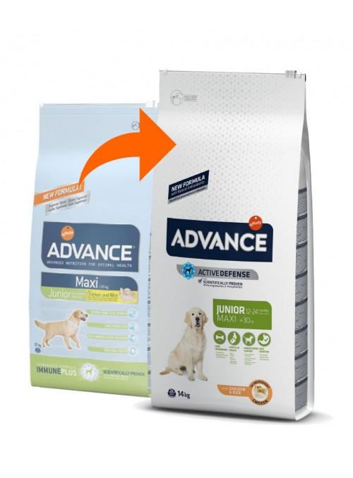 Advance Maxi Junior-AD514519 (2)