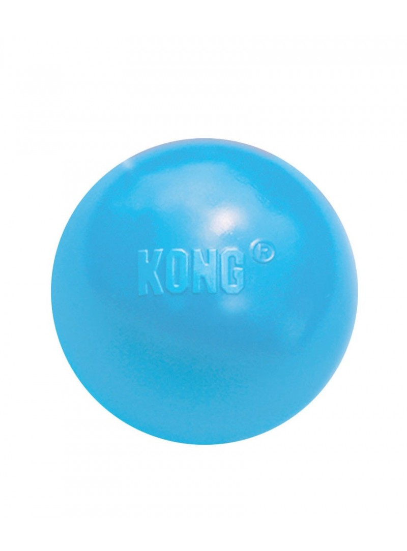 Kong Puppy Ball-KPB2E1 (3)