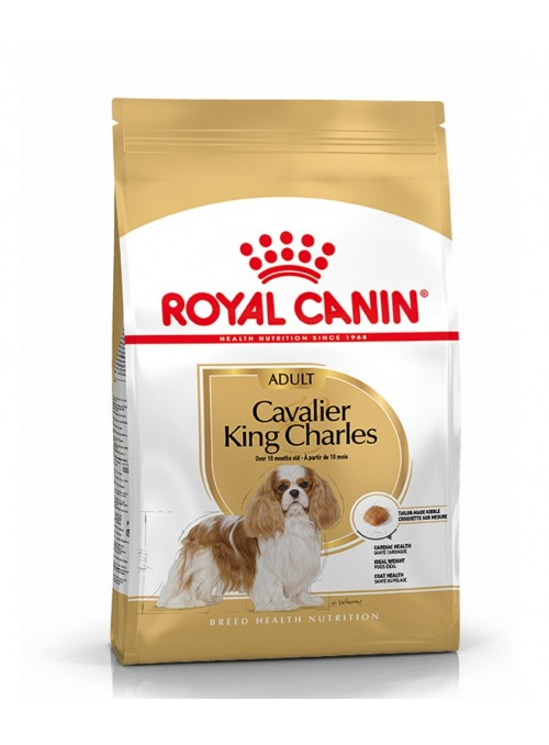 ROYAL CANIN CAVALIER KING...