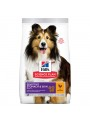 HILLS SCIENCE PLAN DOG STOMACH & SKIN CHICKEN - 14kg - H4365