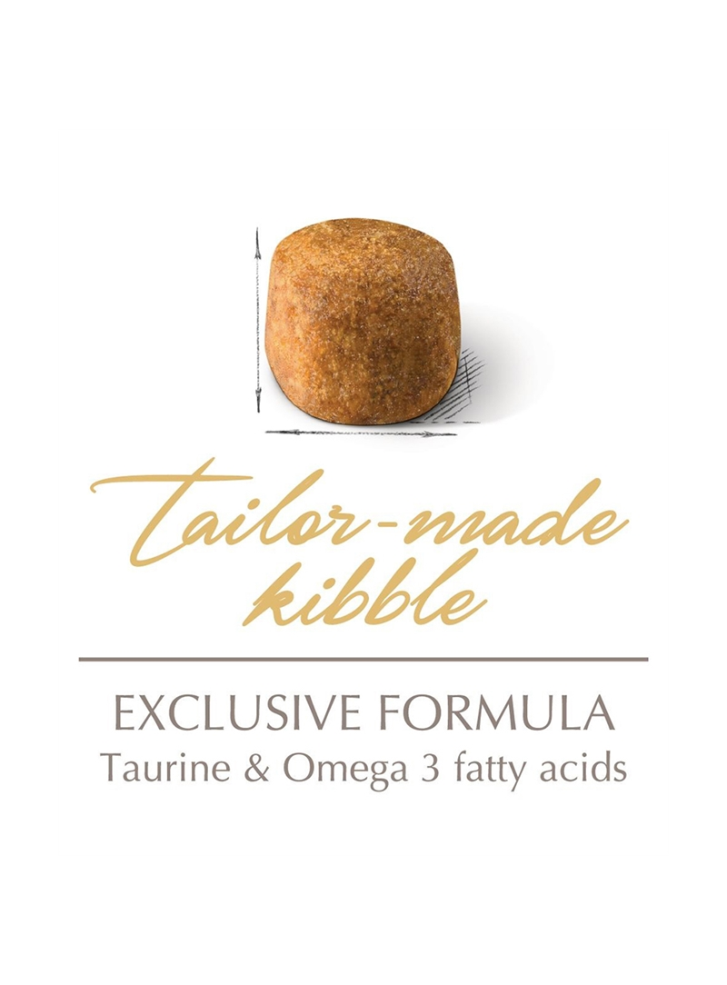 ROYAL CANIN MAINE COON ADULT - 4kg - RCMAINECO004