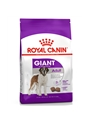 ROYAL CANIN GIANT ADULT - 15kg - RCGADL15