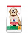 HILLS SCIENCE PLAN PUPPY LARGE CHICKEN - 14,5kg - H1365
