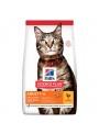 HILLS SCIENCE PLAN CAT ADULT CHICKEN - 10kg - H6055